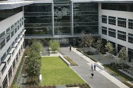 apple office. ralph barrera this is a view of buildings 3 and 4 on the apple campus complete wellness center located grounds in north office