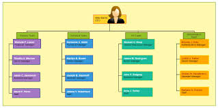 What Are The Different Types Of Organizational Charts Types Of Organizational Charts Organizational Chart