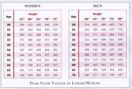 Chart For Peak Flow Meter Spirometer Readings Chart Peak