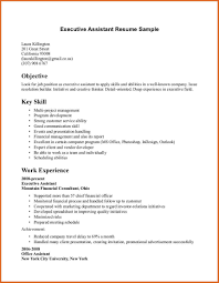 skills of customer service representative professional skills resume summary for templates customer service