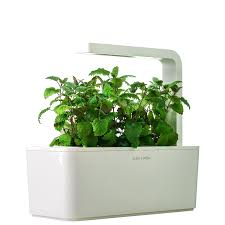 Hydroponic Kitchen Herb Garden How To Build Indoor Hydroponic Gardens Using Ikea Storage Boxes