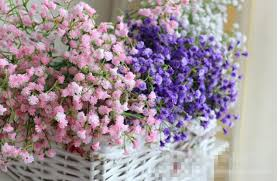 gypsophila baby s breath i would like purple flowers for the bridesmaids to hold