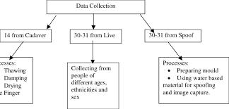 Data Collection Chart 1 Data Collection Chart Download Scientific Diagram