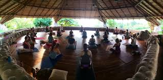 memories of asheville munity yoga trip to costa rica