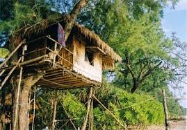 Quirky Hotels Around The World Blog Archive Alpharooms Com Nipa Treehouse  Accomodation On Koh Phayam Thailand