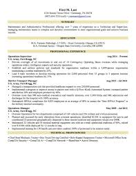 Best Resumes 2015 Resume Summary Examples Elegant Awesome How Can I