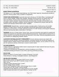 Astonishing Information Technology Resume Templates Microsoft Word