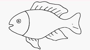 Hướng dẫn bé cách vẽ con cá dễ thương   Bé vui chơi giải trí - YouTube