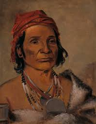 file george catlin deep lake an old chief 1985 66 264