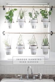 Hanging Kitchen Herb Garden 17 Best Ideas About Hanging Herbs On Pinterest Kitchen Herbs
