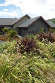 Small Picture 19 best New Zealand Design images on Pinterest Native gardens