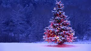 Desktop Christmas Lights Christmas Tree Lights Snow Forest Holiday Desktop Wallpaper