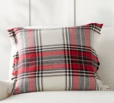 Pottery Barn 20 X 20 Pillow Covers