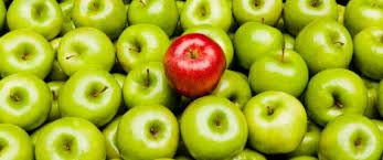 conformity vs individualism knowledge skills individuality tuition