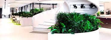 interior office plants. interior landscapes office plants