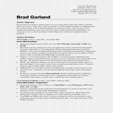 Resume Objectives Examples Rn Resume Sample Unique Writing A Resume