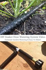 garden soaker hose. DIY Soaker Hose Drip Irrigation System That Is Easy To Make. In This Video I Walk How Made For My Raised Bed Vegetable Garden. Hoses Water The Garden