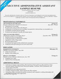 Resume Examples 2016 Magnificent √ 60 Beautiful Secretary Resume Examples 60 Jonahfeingold