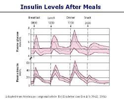 Hypoglycemia Level Chart Achievelive Co