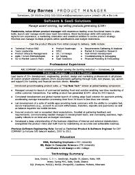 Keywords For Program Manager Resume Best Of Product Manager Resume