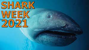 Shark Week 2021 Is Here! - YouTube