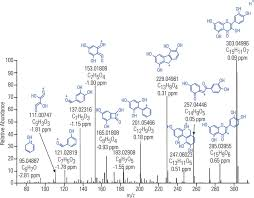 Fragmentation Ms Ms Spectrum Of Flavonoid Quercetin M Z