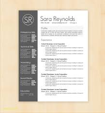 Free Minimalist Resume Template Word Awesome Design Free Clean