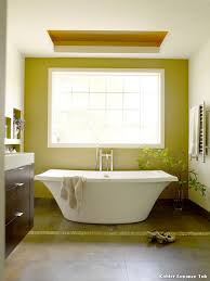colorful kohler expanse tub inspiration bathroom with bathtub