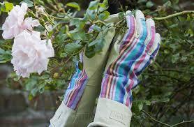 las gauntlet gardening gloves