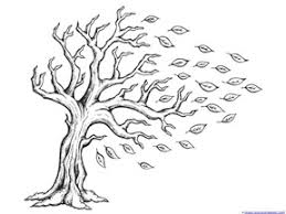 Fall Tree Coloring Pages 2242980