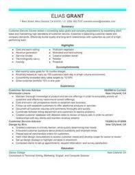 Customer Service Resume Summary Examples Resume Summary Examples ...
