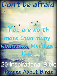 Psalms Quotes 37 Awesome Sparrowbirdquotejpg