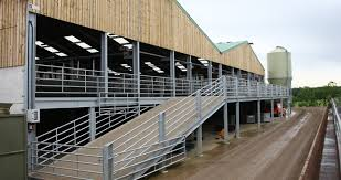 com agriculture penny sheep shed data1 images sheep shed 2 jpg