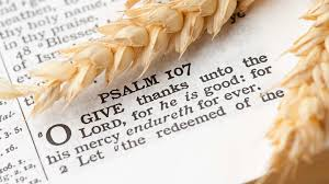 Thanksgiving 40 Best Bible Verses Quotes To Help You Practice Impressive Bible Verse Quotes