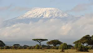 Image result for IMAGES OF KILIMANJARO AIRPORT