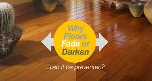 How To Protect Wood Floor In Kitchen