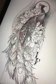 эскиз тату с павлином и цветами Tattoo эскиз птицы эскиз тату и