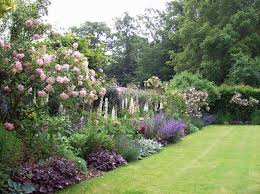 Small Picture 1271 best Border planting ideas images on Pinterest Garden ideas