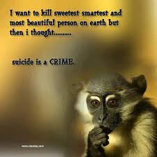 Funny And Beautiful Quotes Best Of Suicide Is A Crime Funny Quote Quotespictures