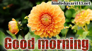 Good Morning Images With Flowers 2021 ...