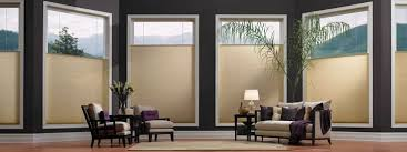 Roller Shades  Shades  The Home DepotWindow Blinds Cordless