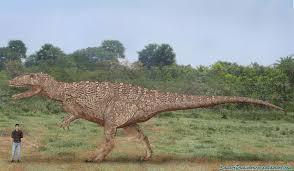 carcharodontosaurus size