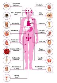 69 Curious Caffeine And Blood Pressure Chart
