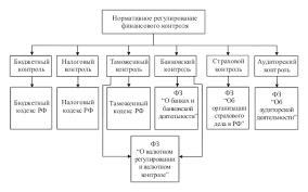 Реферат Особенности финансового контроля в РФ com  Особенности финансового контроля в РФ