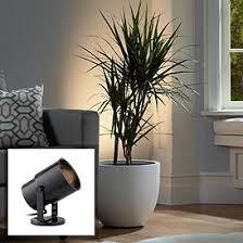 Indoor floor lighting Terrace Floor Black Cordnplug Accent Uplight With Foot Switch Lamps Plus Uplights And Clip On Lights Mini Indoor Spot Lighting Lamps Plus