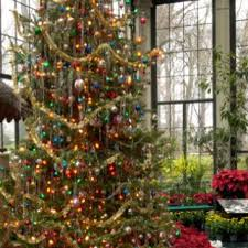 434 best Holiday Tree Magic! images on Pinterest | Christmas time ...