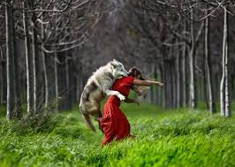 Women Who Run With The Wolves Quotes Delectable A Woman's Bible = Women Who Run With Wolves