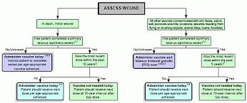 Summary Guide To Tetanus Prophylaxis In Routine Wound