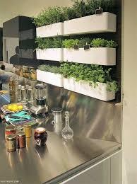 Get kitchen wall indoor herb garden picture ...