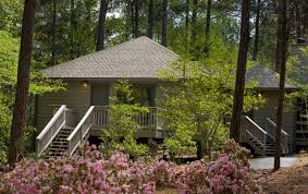 places to stay in pine mountain ga